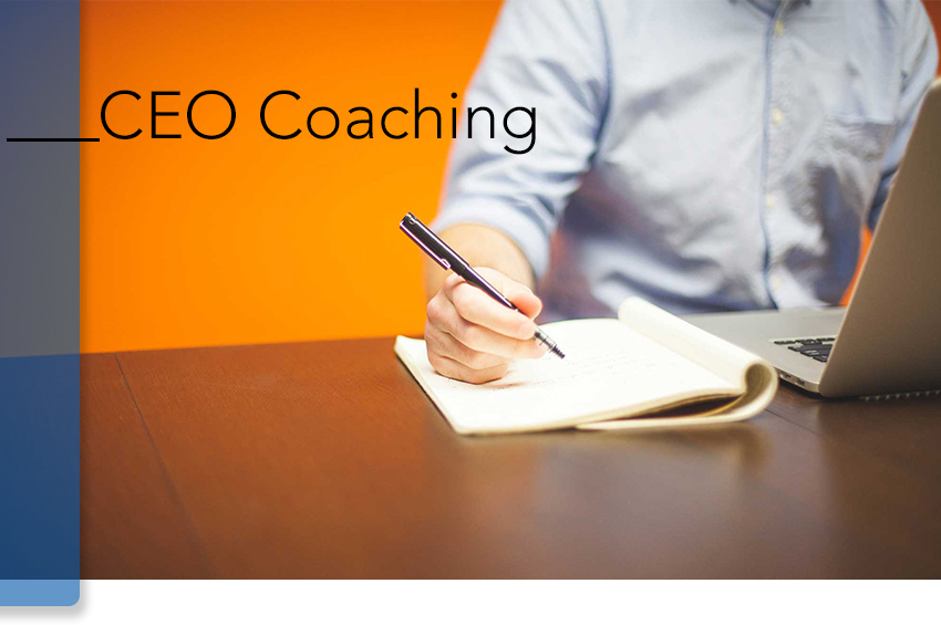 nLIVEn CEO Coaching